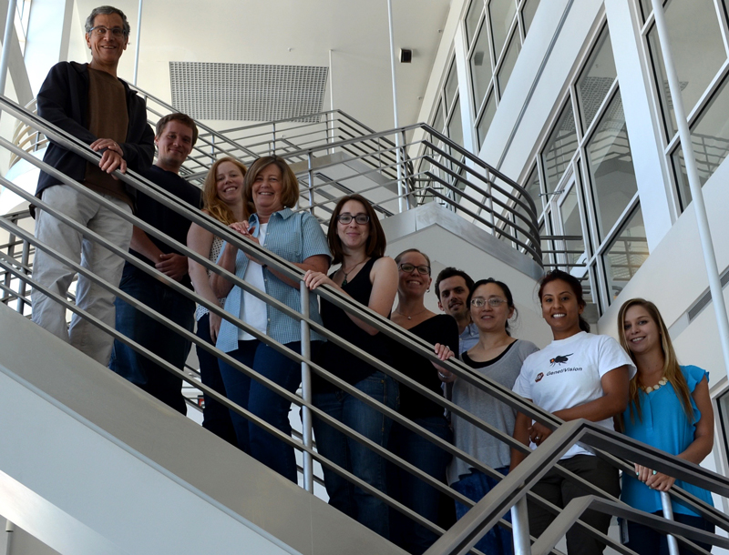 Thummel Lab Group 2012